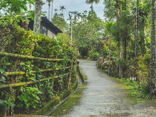 Assam Holidays – 09
